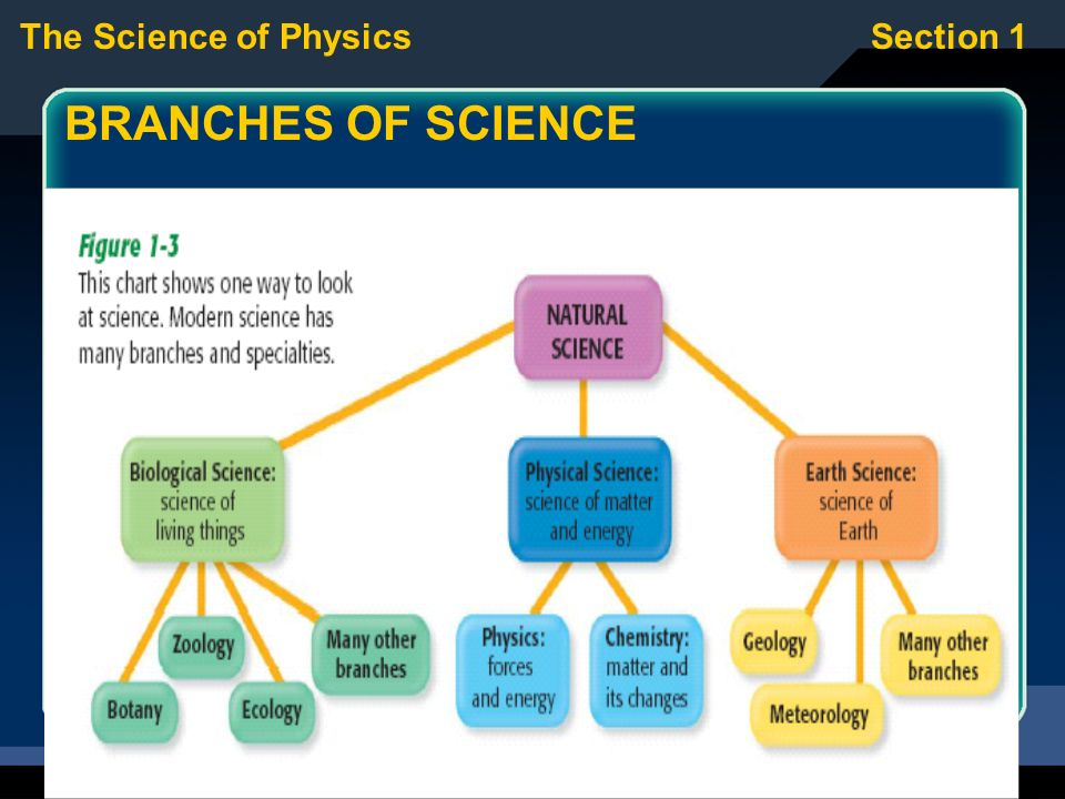 The Science of PhysicsSection ...