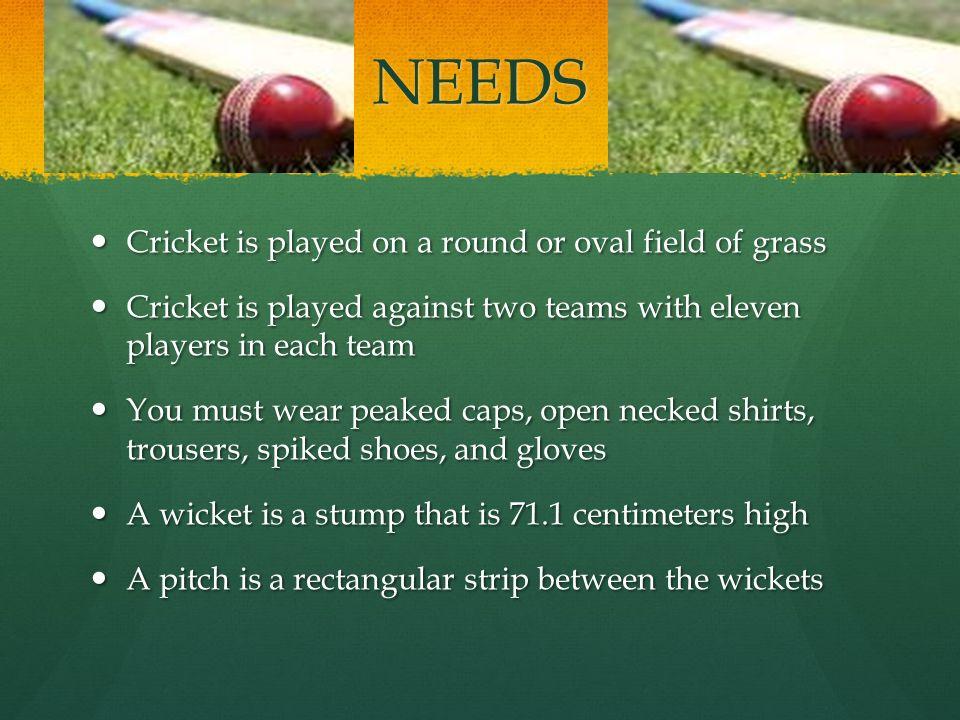 Presentation on cricket.