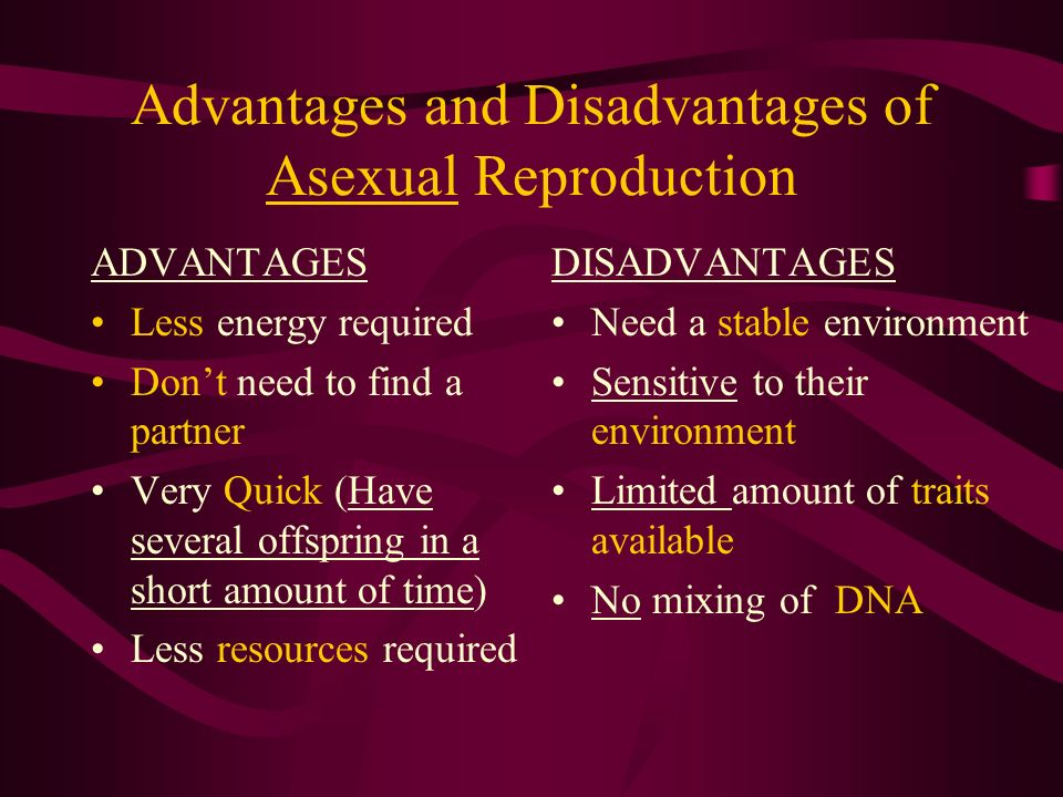 Advantages and disadvantages of asexual reproduction ppt