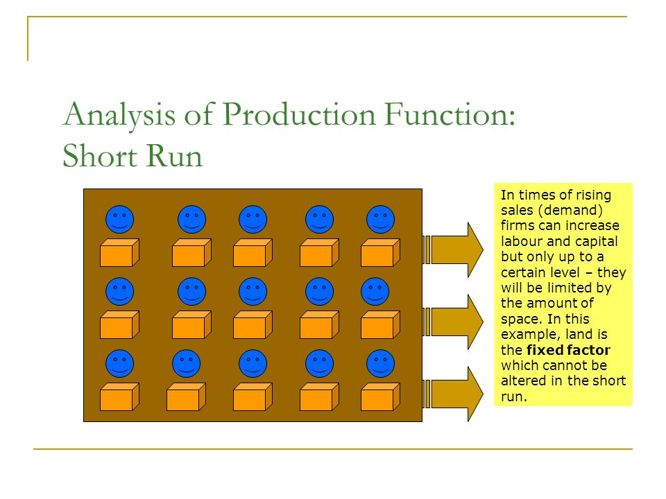 fixed factor of production example
