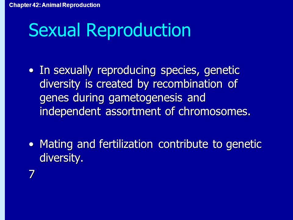 Genetic variation in sexually reproducing species