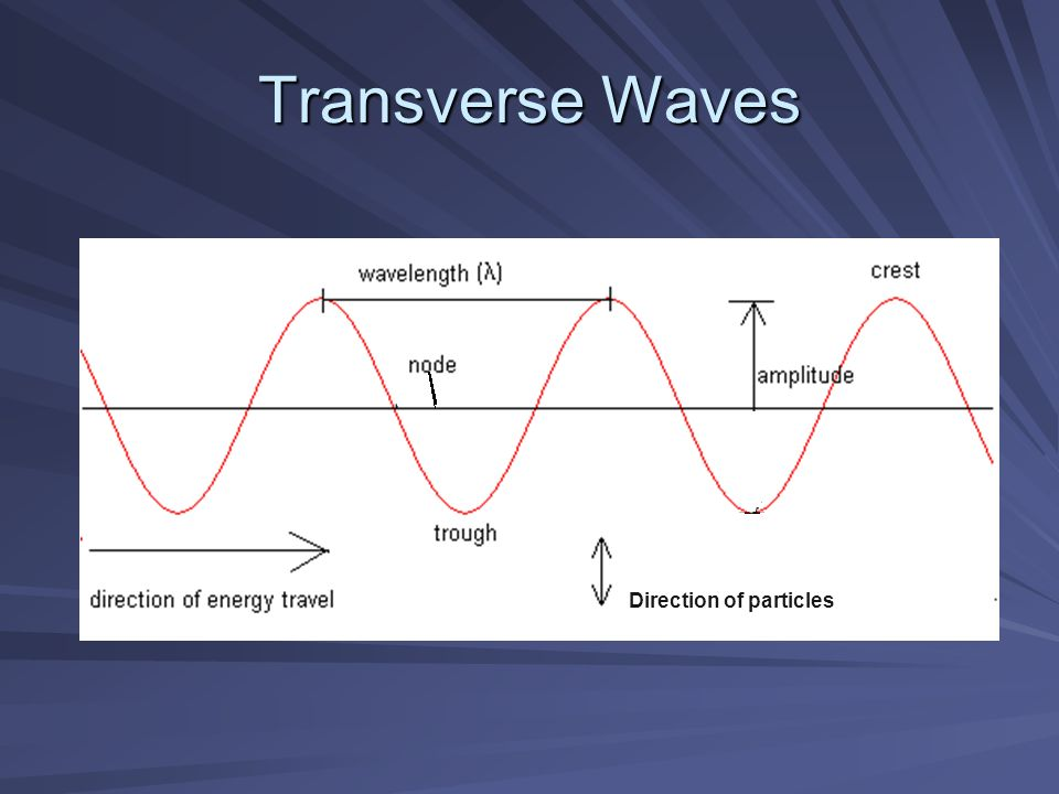 Transverse Waves Direction of particles