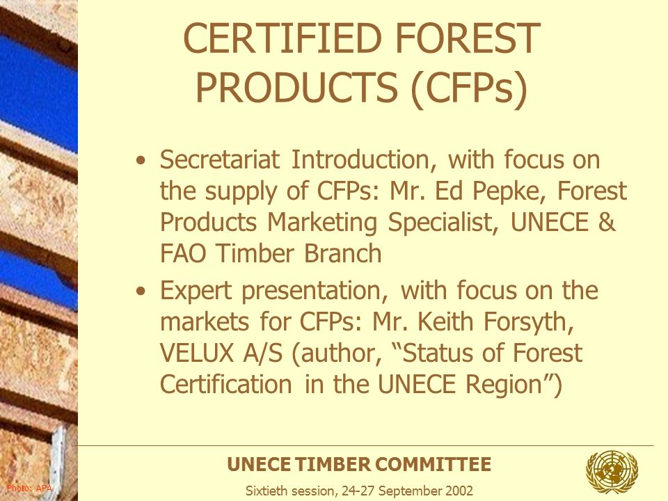 Unece Timber Committee Sixtieth Session September 2002 Photo Apa