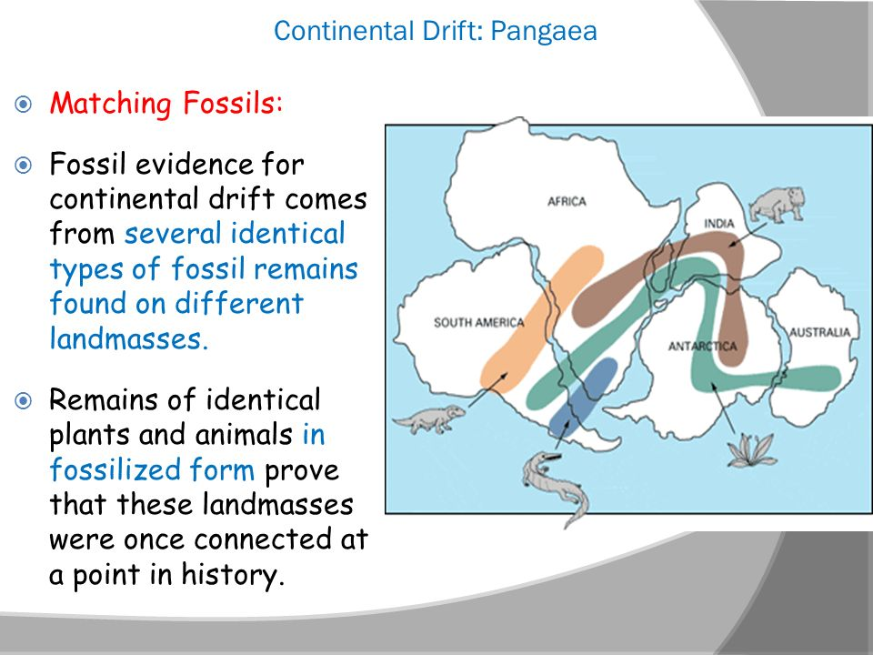 plate tectonics marine resources Marine ecosystems • understand historical environmental changes in australia as seen in the fossil record  this resource may be used individually or with the queensland museum online resources 'plate tectonics part 1-3.