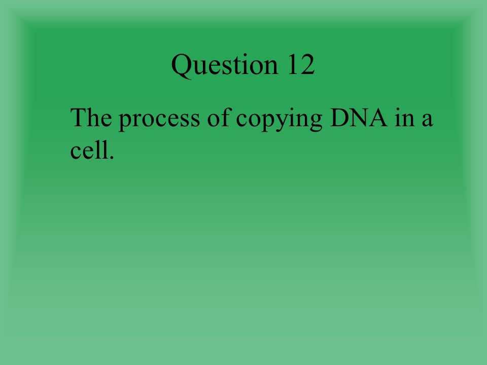 Question 12 The process of copying DNA in a cell.