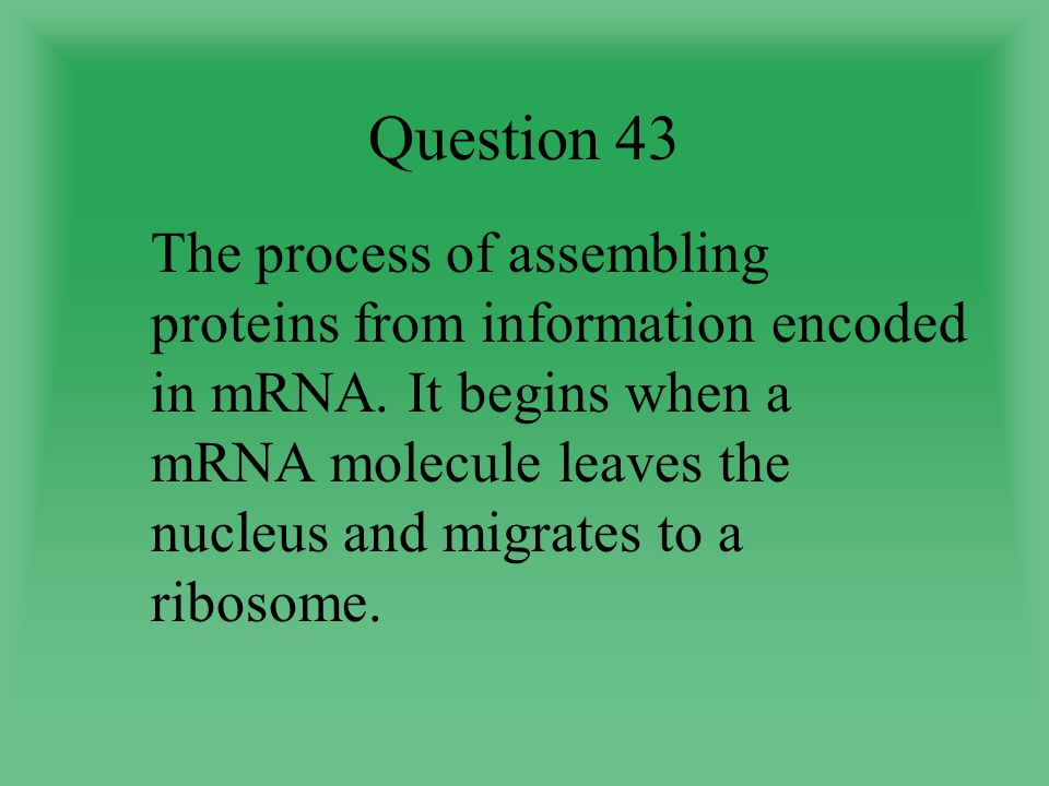 Question 43 The process of assembling proteins from information encoded in mRNA.