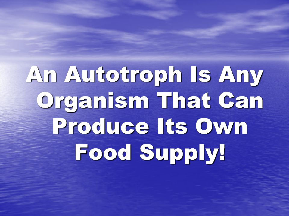 An Autotroph Is Any Organism That Can Produce Its Own Food Supply!