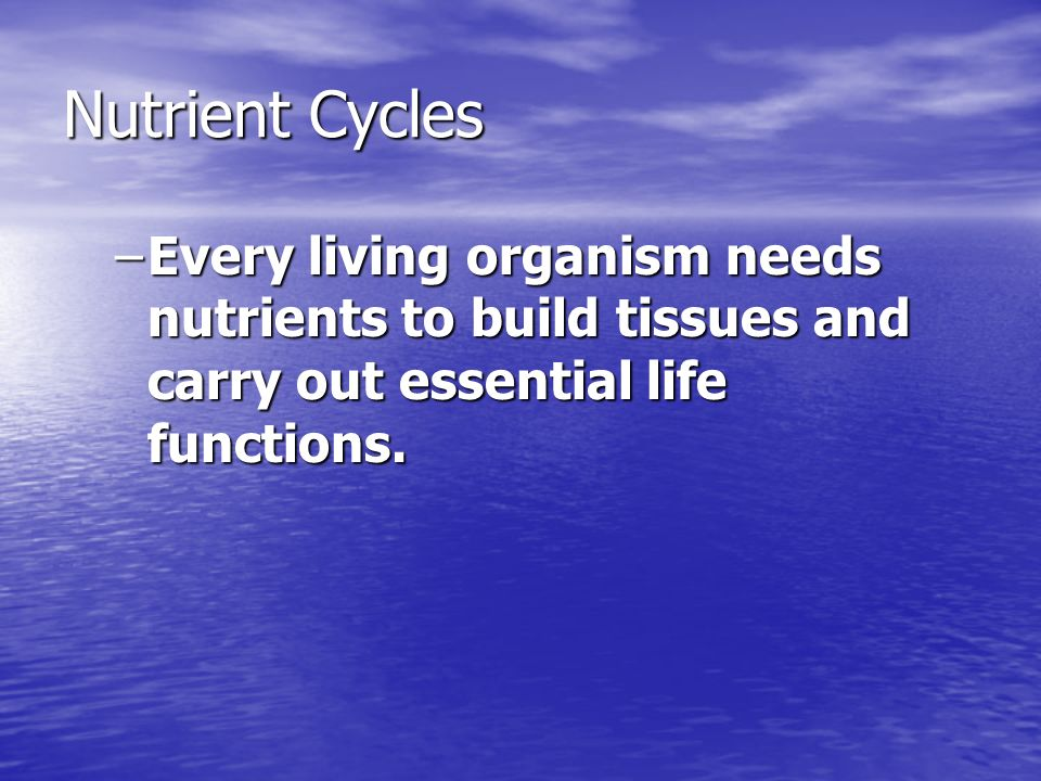 Nutrient Cycles –Every living organism needs nutrients to build tissues and carry out essential life functions.
