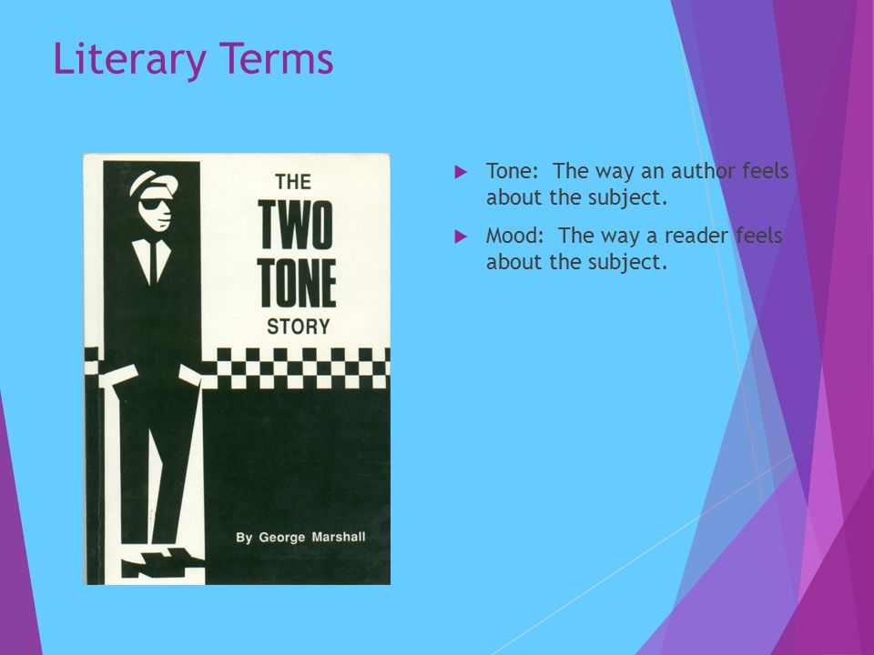 Literary Terms  Tone: The way an author feels about the subject.