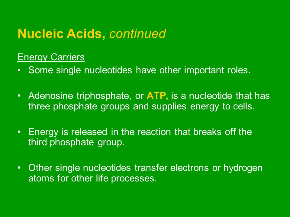 Chapter 3: Chemistry of Life  Section 1: Matter and Substances