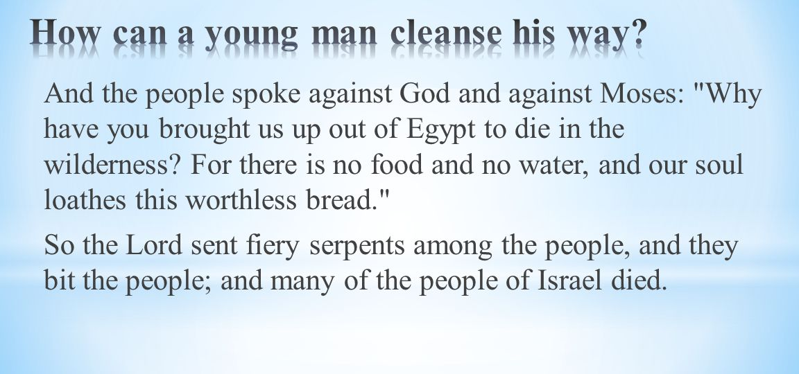 And the people spoke against God and against Moses: Why have you brought us up out of Egypt to die in the wilderness.