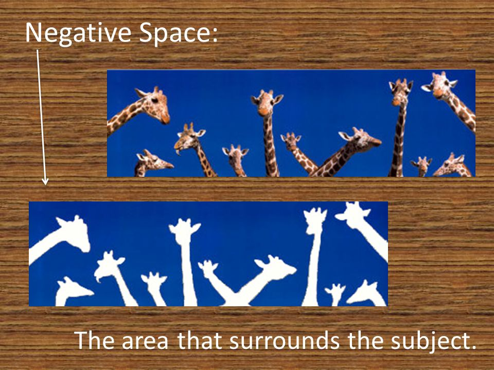 Negative Space: The area that surrounds the subject.