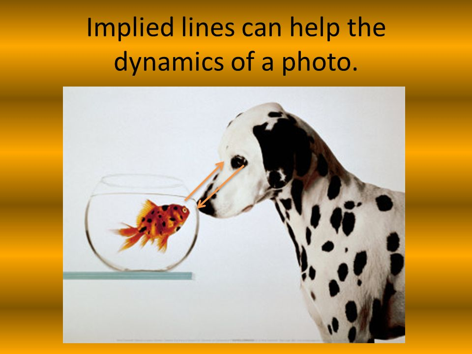 Implied lines can help the dynamics of a photo.
