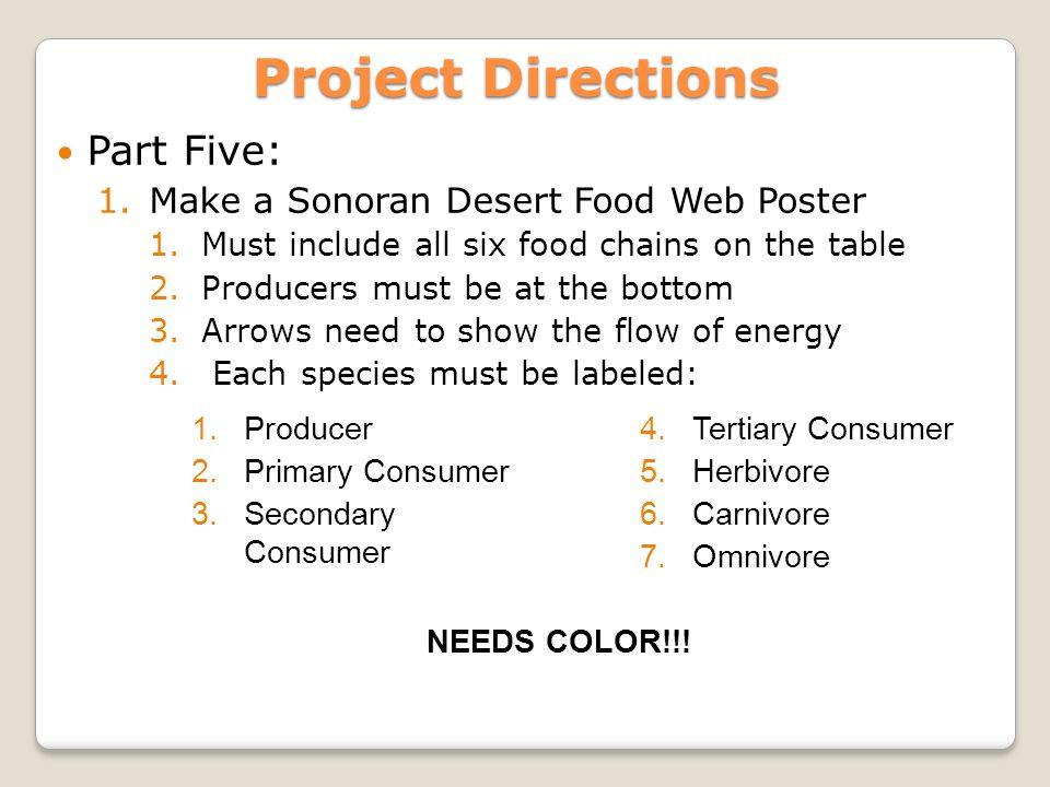 Project Directions Part One 1 Assign One Column Of Species Per