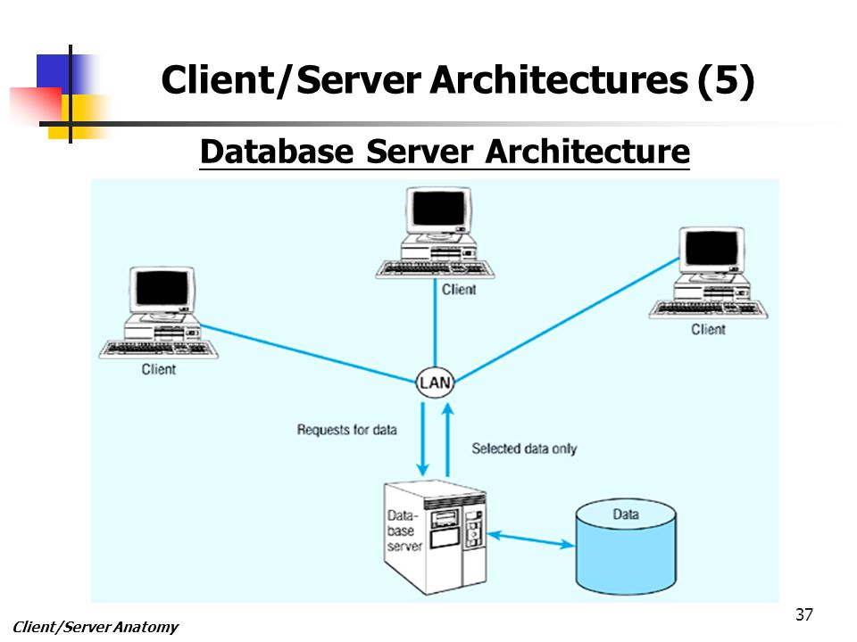 1 1 Client/Server Anatomy 2 Client/Server Technologies 3