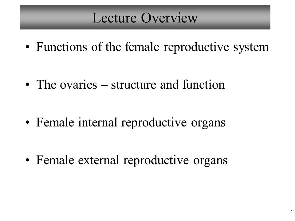 Chapter 27 Female Reproductive System Lecture 19 Mariebs Human
