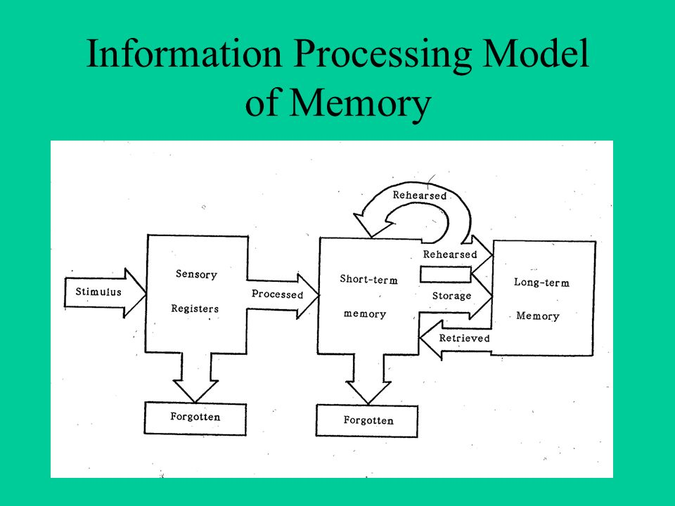 information process Information processing is the change (processing) of information in any manner detectable by an observer as such, it is a process that describes everything that happens (changes) in the universe , from the falling of a rock (a change in position) to the printing of a text file from a digital computer system.