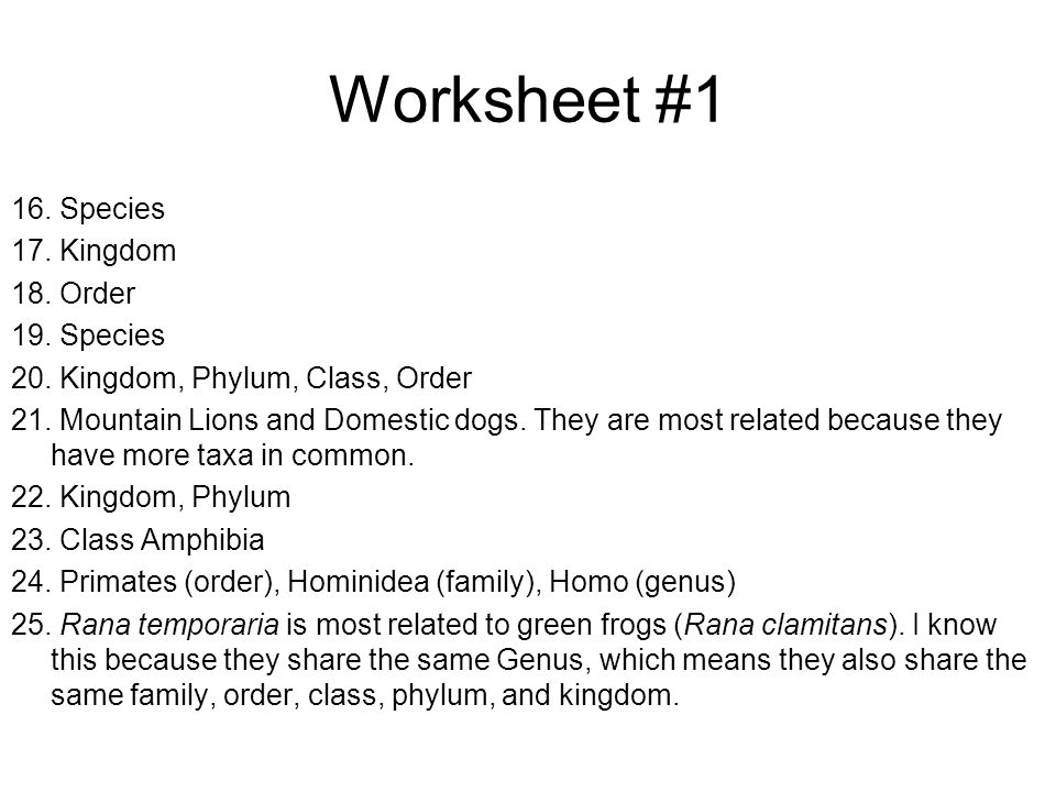 Worksheet 1 16 Species 17 Kingdom 18 Order 19 Species