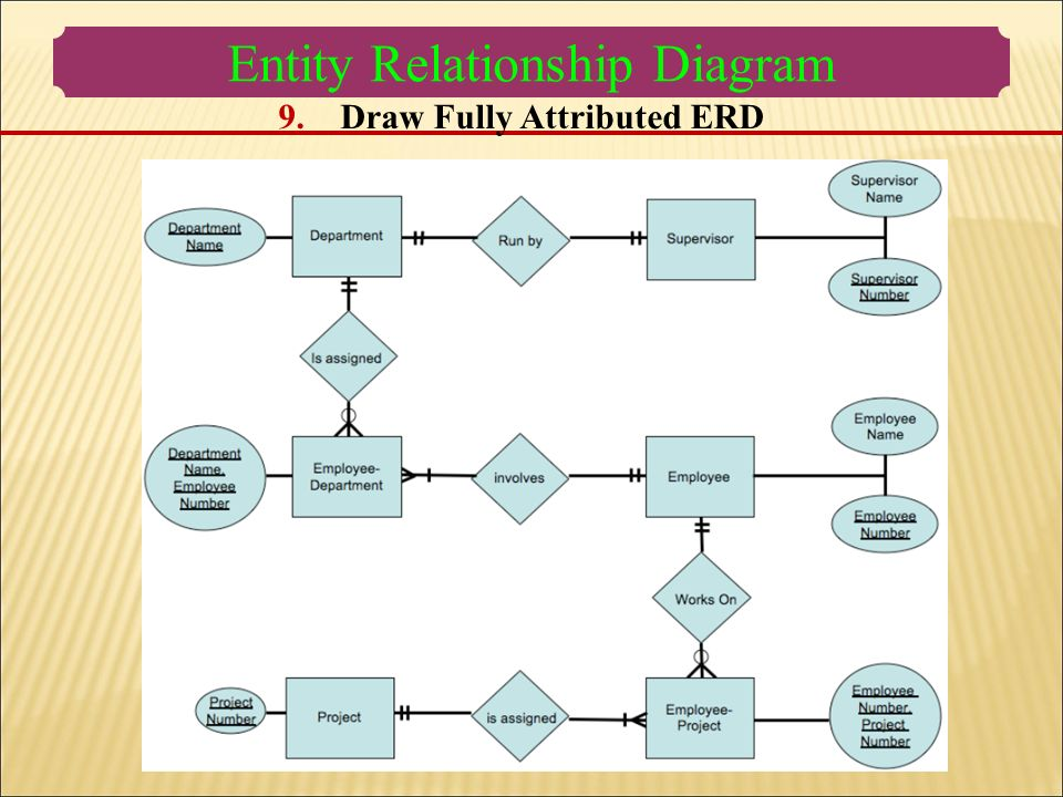 Database Systems Entity Relationship Diagram How To Develop An Erd