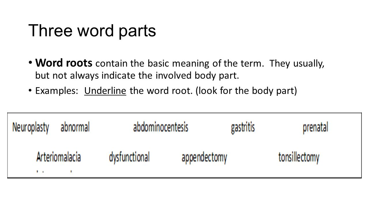 Basic definitions of the word