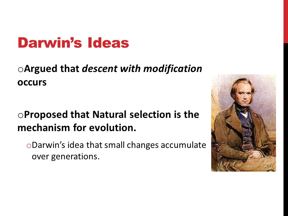 Darwin's Ideas o Argued that descent with modification occurs o Proposed that Natural selection is the mechanism for evolution.