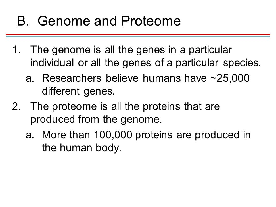B.Genome and Proteome 1.The genome is all the genes in a particular individual or all the genes of a particular species.