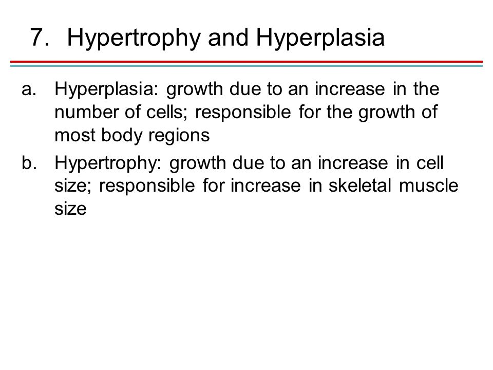 7.Hypertrophy and Hyperplasia a.Hyperplasia: growth due to an increase in the number of cells; responsible for the growth of most body regions b.Hypertrophy: growth due to an increase in cell size; responsible for increase in skeletal muscle size