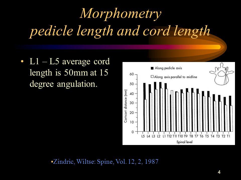 average spine length