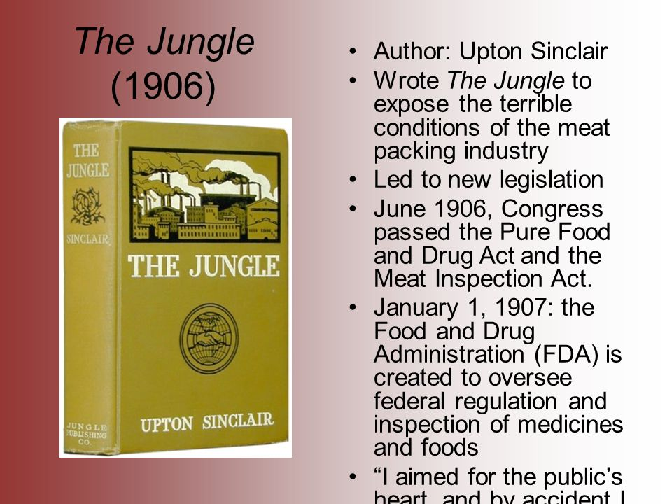 "the progressive era in upton sinclairs the jungle The progressive era took place between 1890 and 1920 fast growing industrialization  upton sinclair was a investigative  in rooms and the water from leaky roofs would drip over it, and thousands of rats would race about on it""(the jungle, chapter 14) this evidence demonstrates how unsanitary and dirty the meat packing."