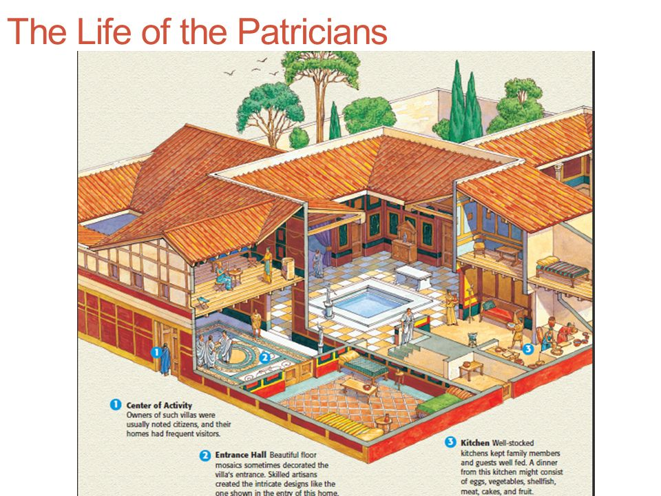 The Life of the Patricians