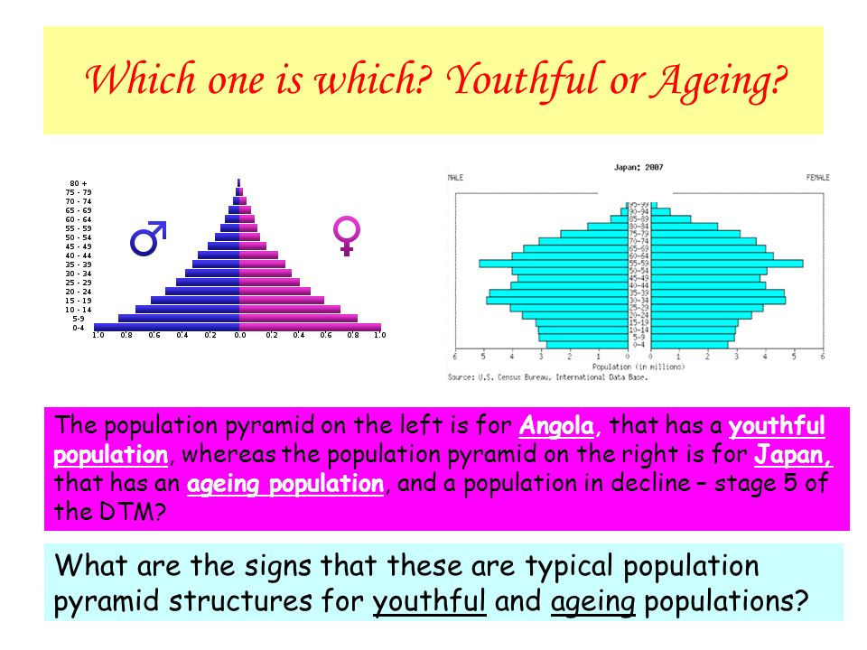 youthful and ageing population