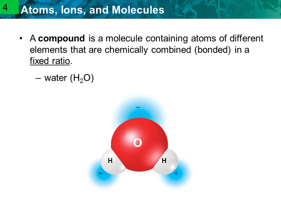 2.1 Atoms, Ions, and Molecules –water (H 2 O) O HH _ ++ A compound is a molecule containing atoms of different elements that are chemically combined (bonded) in a fixed ratio.