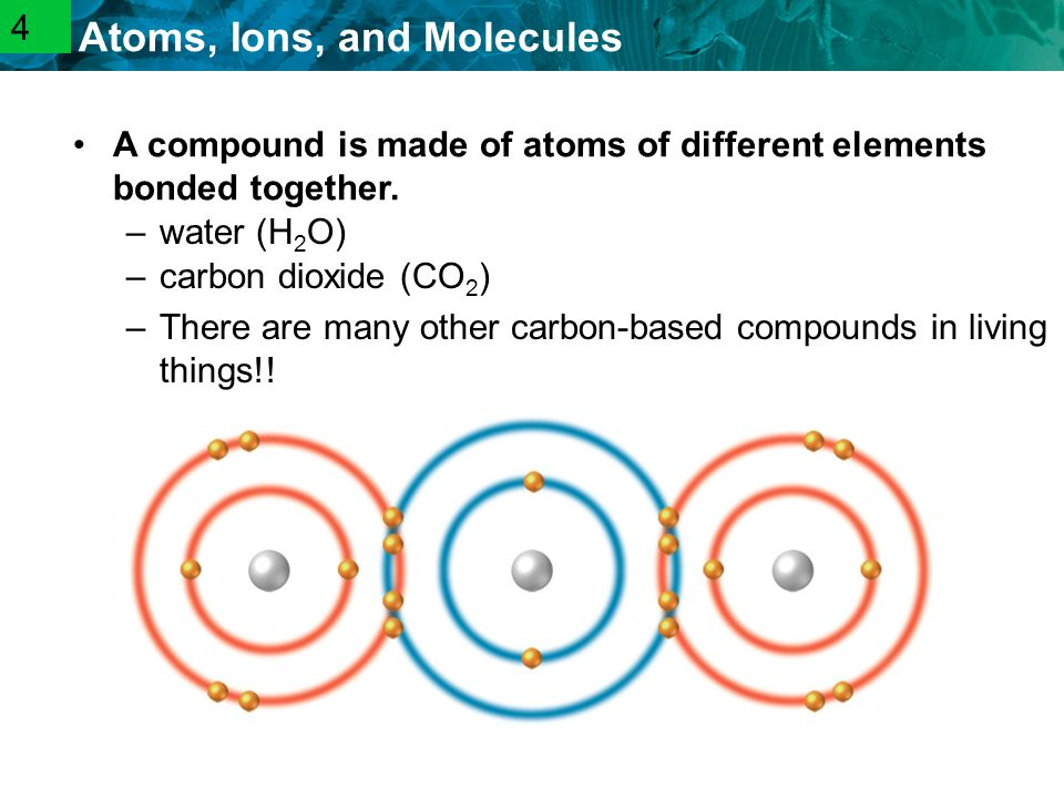2.1 Atoms, Ions, and Molecules –carbon dioxide (CO 2 ) –There are many other carbon-based compounds in living things!.