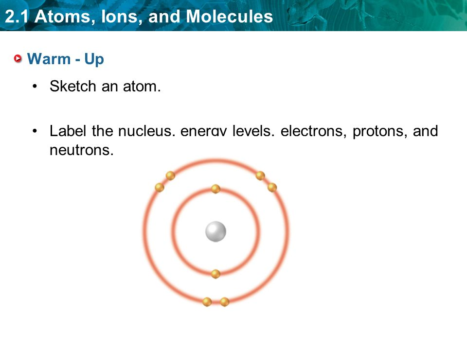 2.1 Atoms, Ions, and Molecules Warm - Up Sketch an atom.