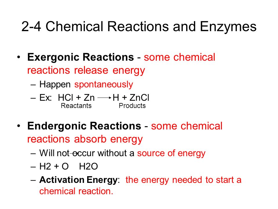 chemical reaction essays Chemical reactions are the heart of chemistry people have always known that they exist the ancient greeks were the firsts to speculate on the composition of matter.