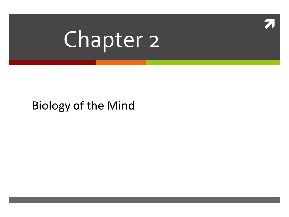 biology of the mind chapter 2