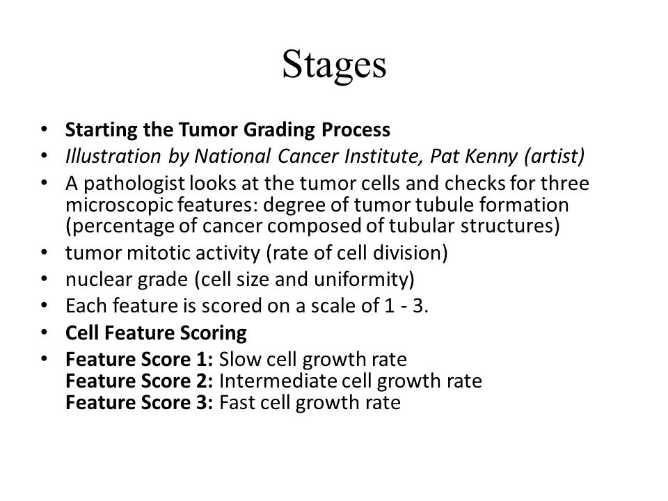 Stages Starting the Tumor Grading Process Illustration by National Cancer Institute, Pat Kenny (artist) A pathologist looks at the tumor cells and checks for three microscopic features: degree of tumor tubule formation (percentage of cancer composed of tubular structures) tumor mitotic activity (rate of cell division) nuclear grade (cell size and uniformity) Each feature is scored on a scale of