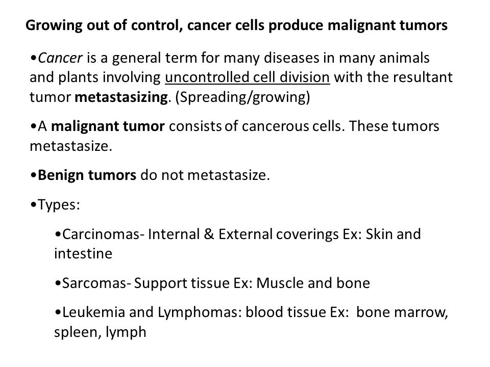 Growing out of control, cancer cells produce malignant tumors Cancer is a general term for many diseases in many animals and plants involving uncontrolled cell division with the resultant tumor metastasizing.