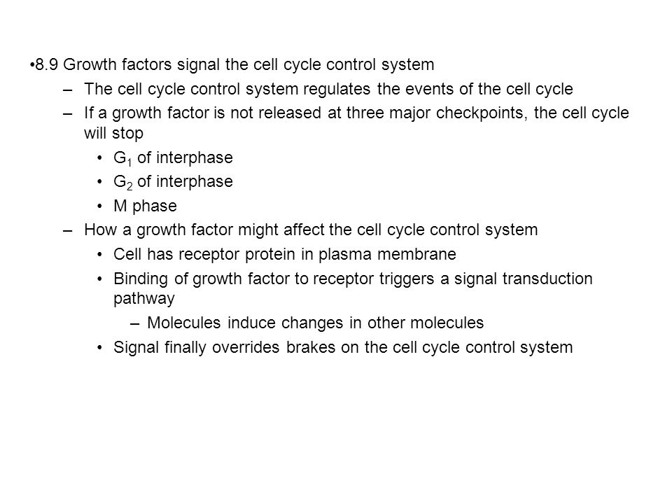 8.9 Growth factors signal the cell cycle control system –The cell cycle control system regulates the events of the cell cycle –If a growth factor is not released at three major checkpoints, the cell cycle will stop G 1 of interphase G 2 of interphase M phase –How a growth factor might affect the cell cycle control system Cell has receptor protein in plasma membrane Binding of growth factor to receptor triggers a signal transduction pathway –Molecules induce changes in other molecules Signal finally overrides brakes on the cell cycle control system