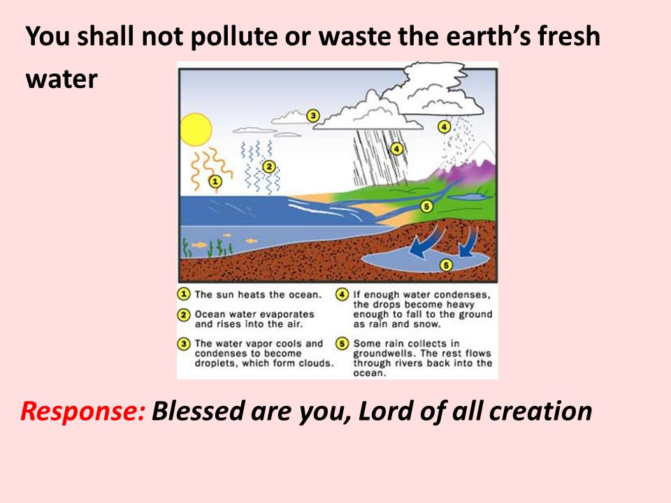 You shall not pollute or waste the earth's fresh water Response: Blessed are you, Lord of all creation