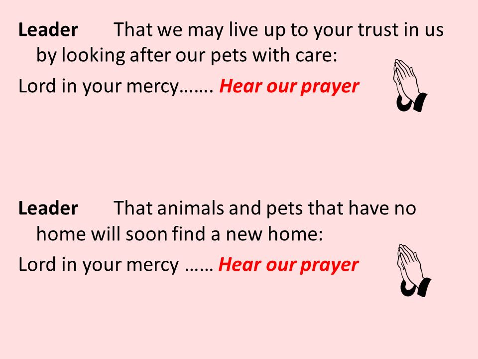 LeaderThat we may live up to your trust in us by looking after our pets with care: Lord in your mercy…….