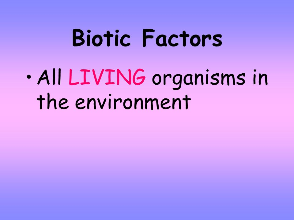 Ecology Branch of biology that deals with the interactions among organisms and their environment