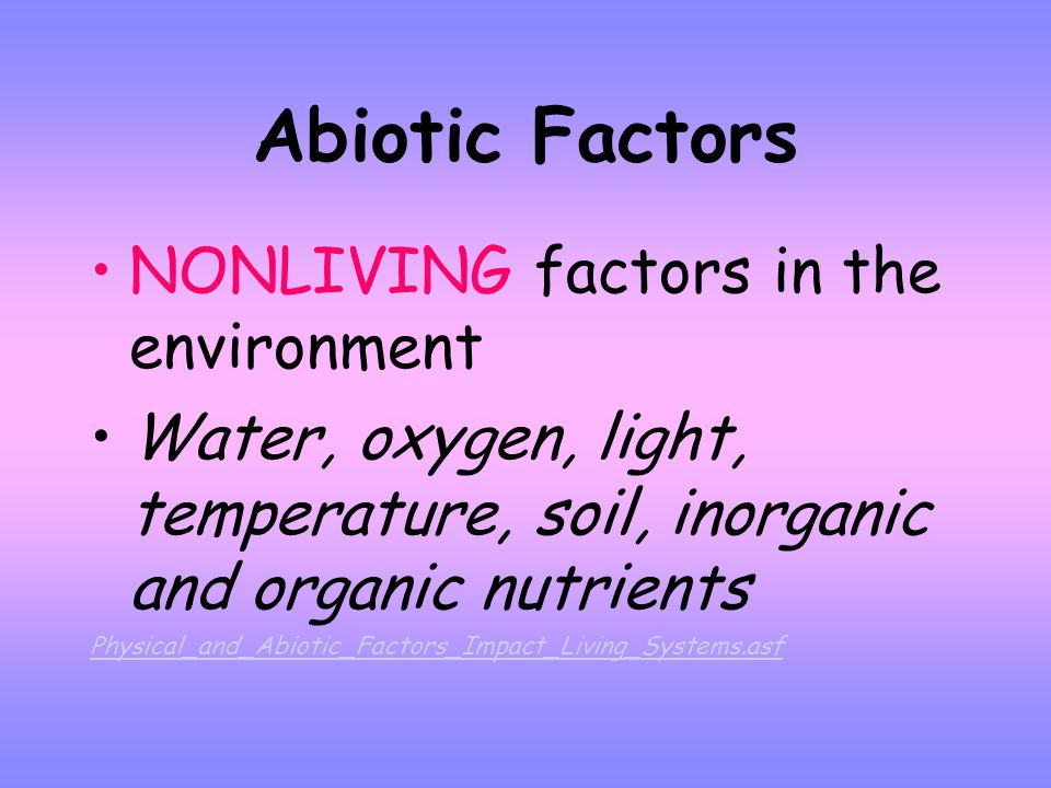 Biotic Factors All LIVING organisms in the environment