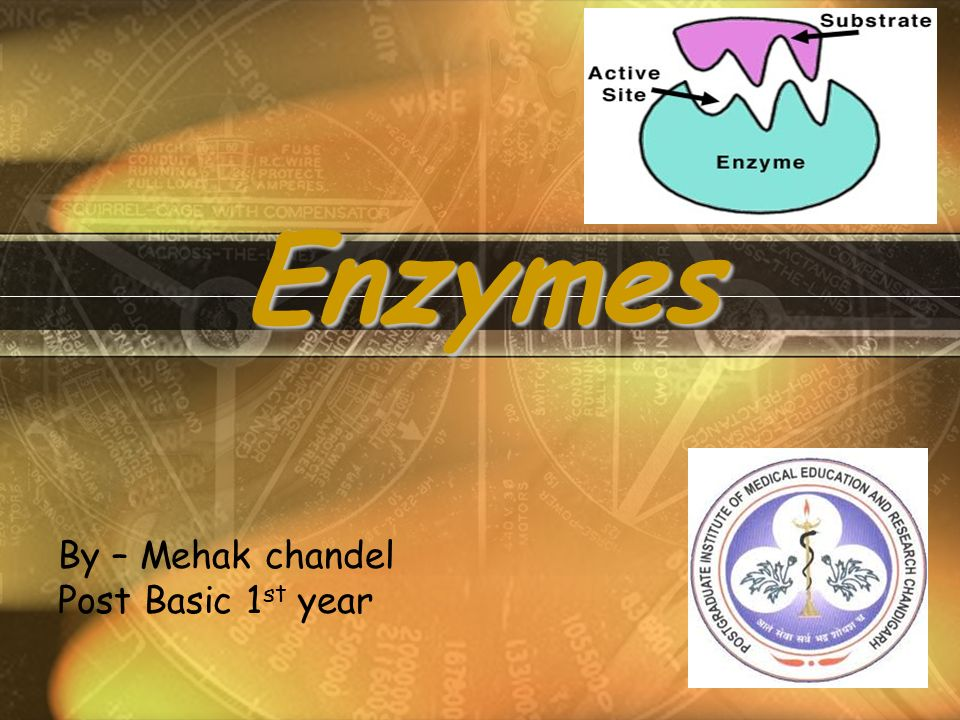 Enzymes By – Mehak chandel Post Basic 1 st year
