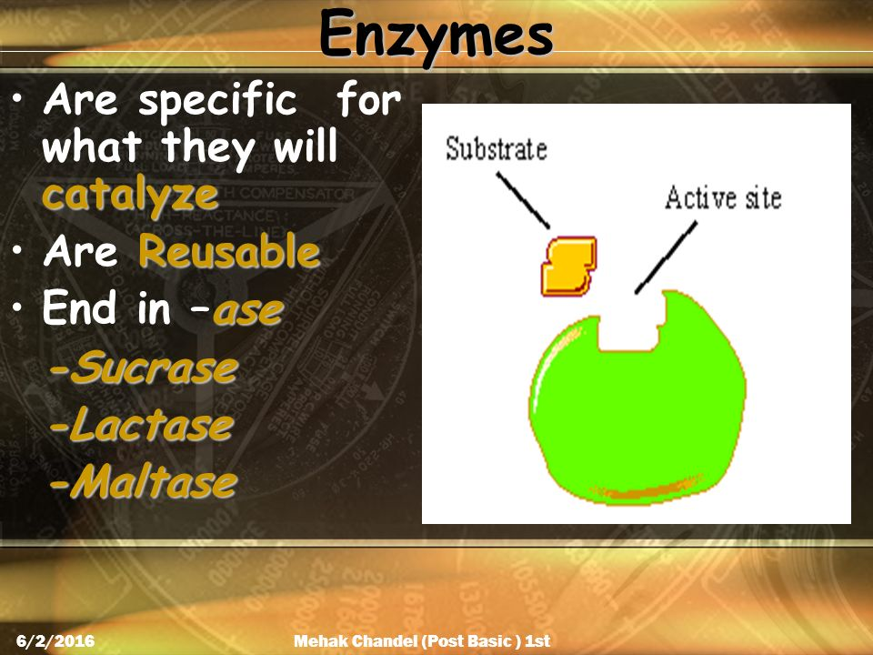 Enzymes catalyzeAre specific for what they will catalyze ReusableAre Reusable aseEnd in –ase-Sucrase-Lactase-Maltase Mehak Chandel (Post Basic ) 1st Year 6/2/2016