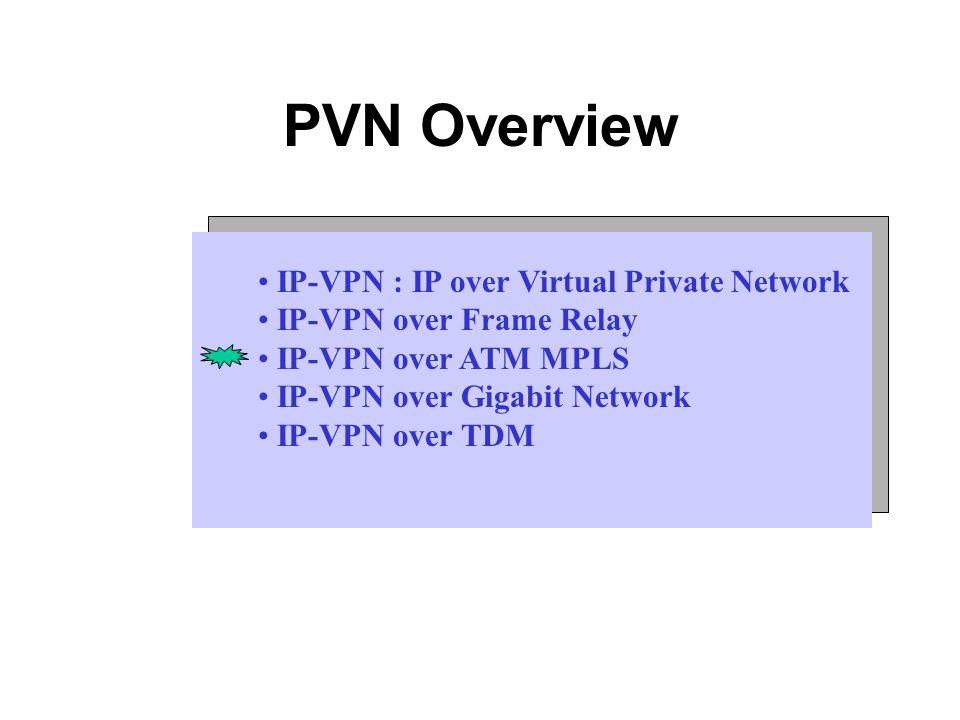 PVN Overview IP-VPN : IP over Virtual Private Network IP-VPN over ...