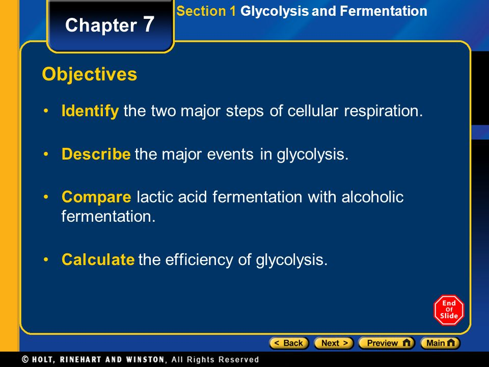 Section 1 Glycolysis and Fermentation Chapter 7 Objectives Identify the two major steps of cellular respiration.