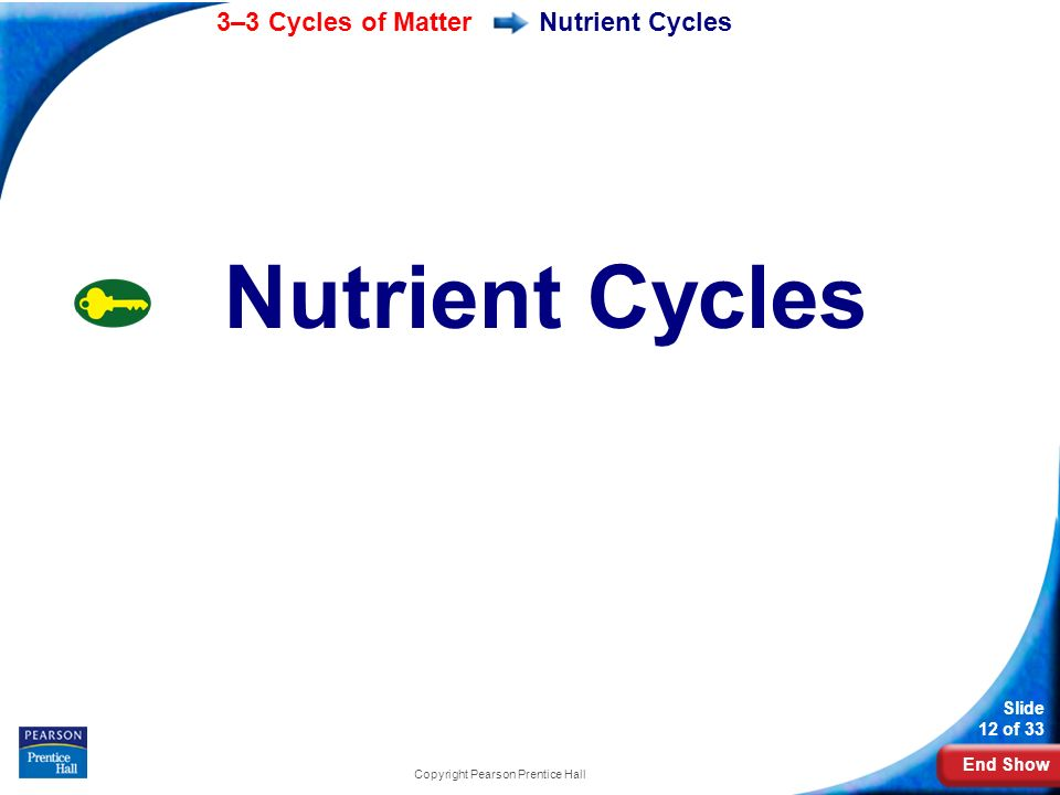 End Show 3–3 Cycles of Matter Slide 12 of 33 Copyright Pearson Prentice Hall Nutrient Cycles