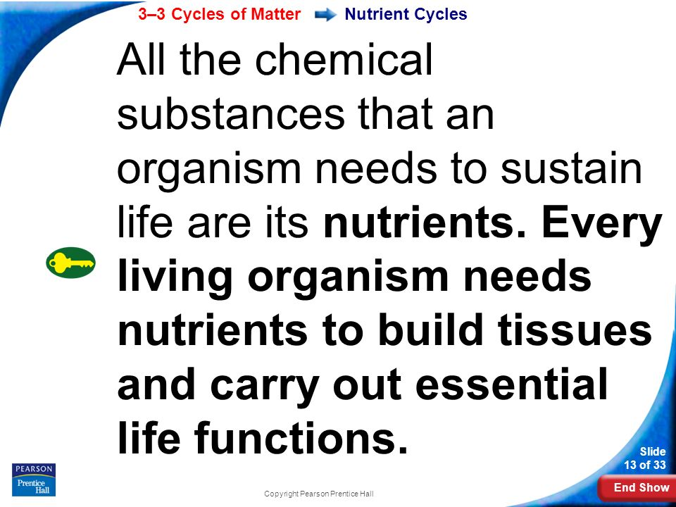 End Show 3–3 Cycles of Matter Slide 13 of 33 Copyright Pearson Prentice Hall Nutrient Cycles All the chemical substances that an organism needs to sustain life are its nutrients.