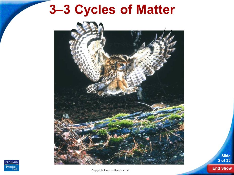 End Show Slide 2 of 33 Copyright Pearson Prentice Hall 3–3 Cycles of Matter